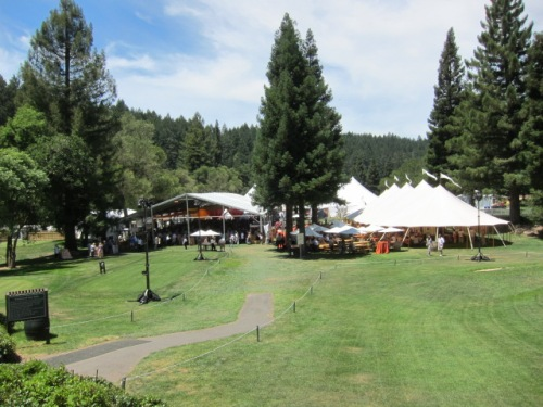 Meadowood readies for Auction Napa Valley last summer