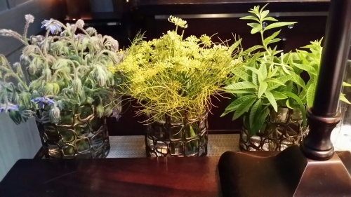 Forgotten Herbs at the Bar at Meadowood