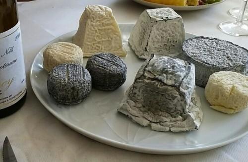 Photo 5 - Cheese