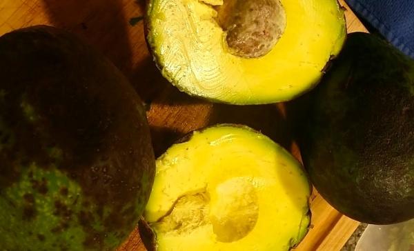hawaiian-avocados-2