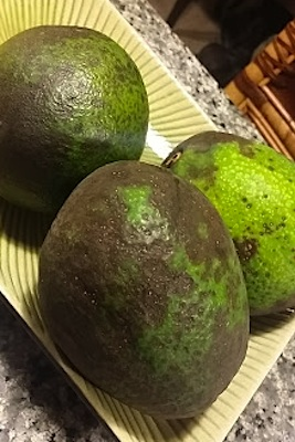 hawaiian-avocados
